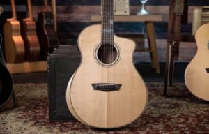 Washburn Guitars BTSC56SCE